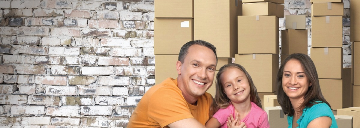 303 668 7444 denver movers amazing moves moving storage