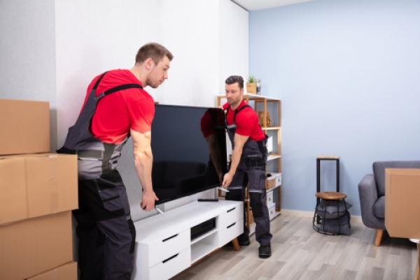 How Denver Colorado Movers Can Benefit Your Move