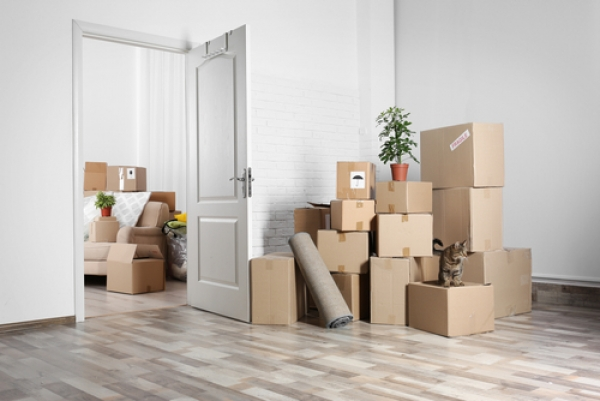 Do You REALLY Need Professional Packing Services?